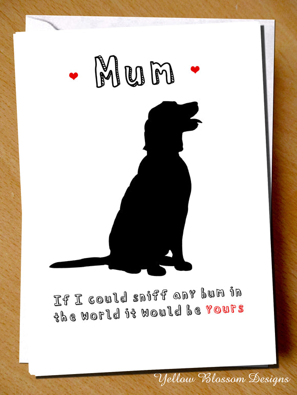 Mum, If I Could Sniff Any Bum In The World It Would Be Yours. Dog Pet
