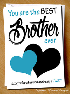 You Are The Best Brother Ever! Except For When You Are Being A TWAT