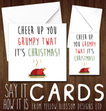 Cheer Up You Grumpy Twat It's Christmas! - YellowBlossomDesignsLtd