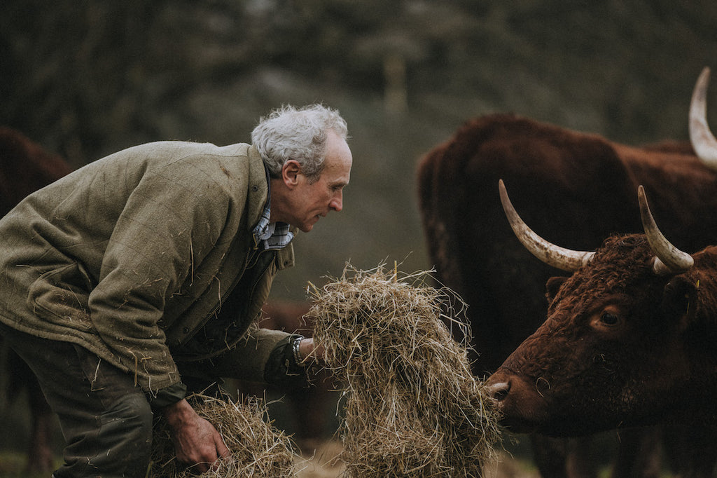 Farming - Peter - Red Ruby - Pipers Farm