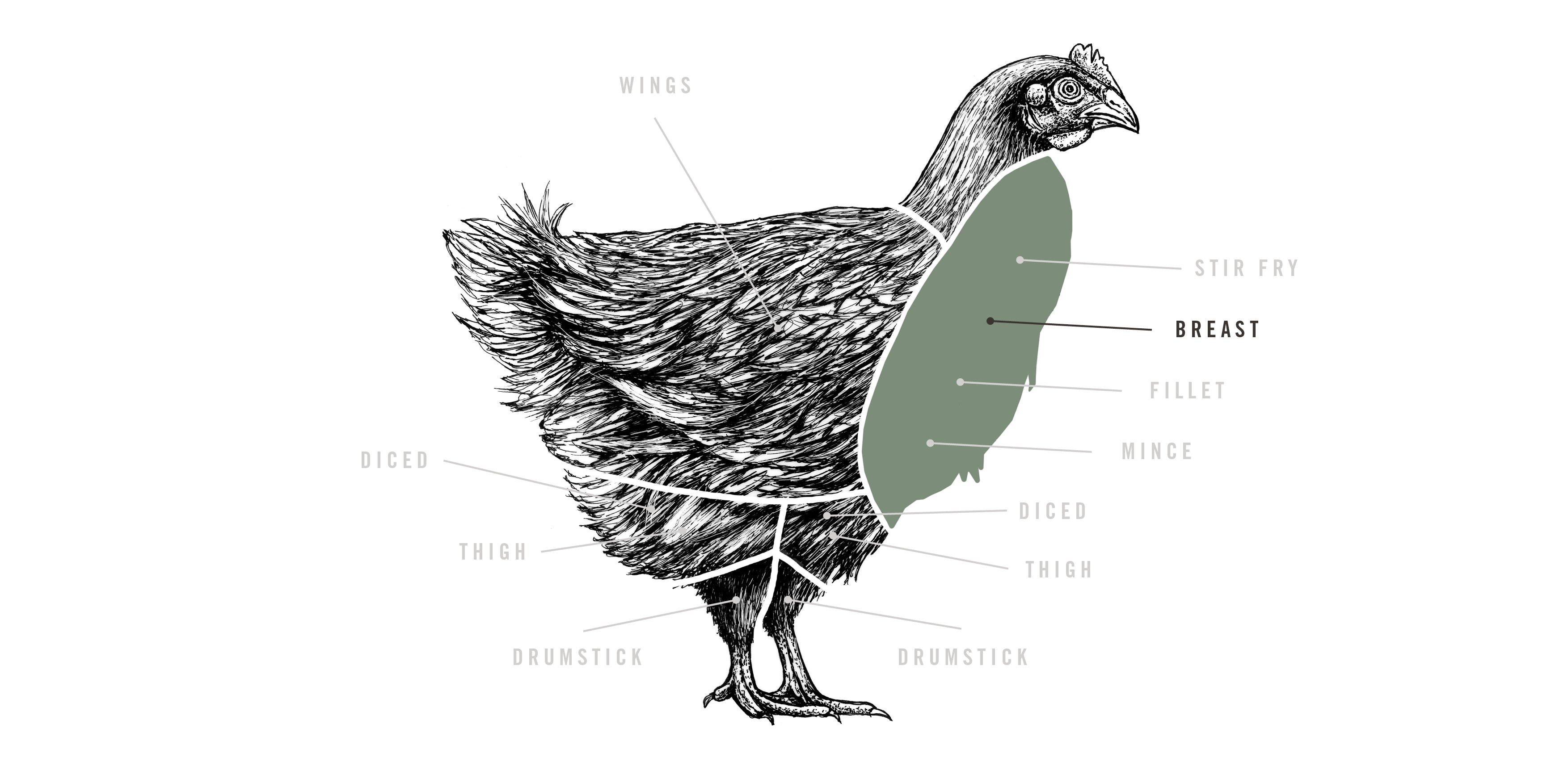 Free Range Chicken Breast Pipers Farm Diagram Of The Wing A Top View Meat Cuts