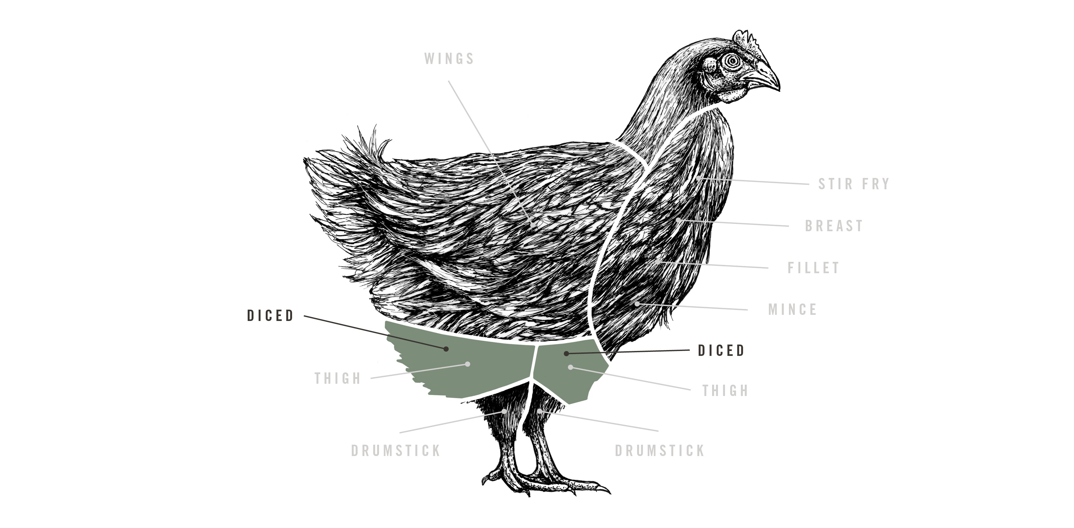 Free Range Diced Chicken meat cuts diagram