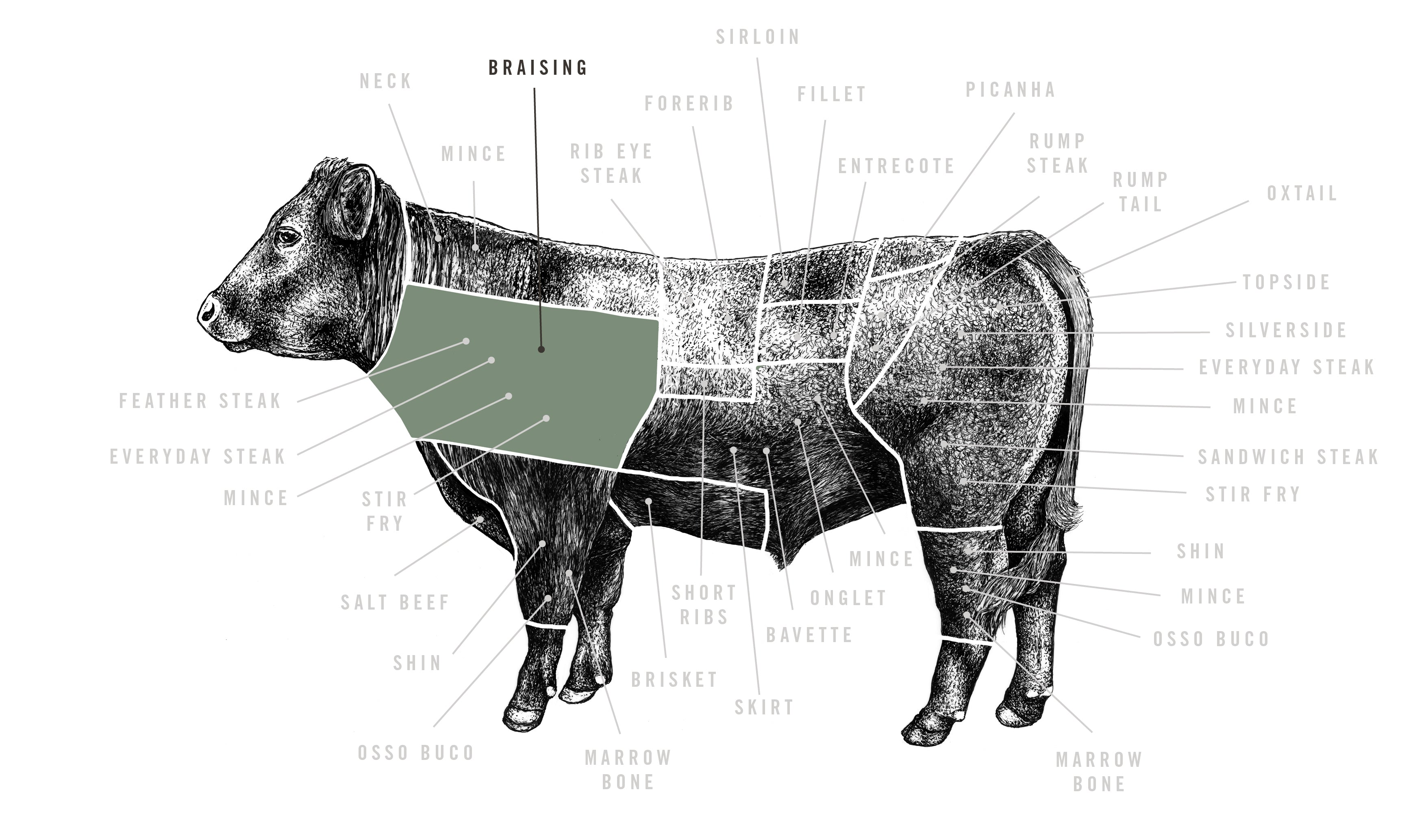 Red Ruby Braising Beef meat cuts diagram