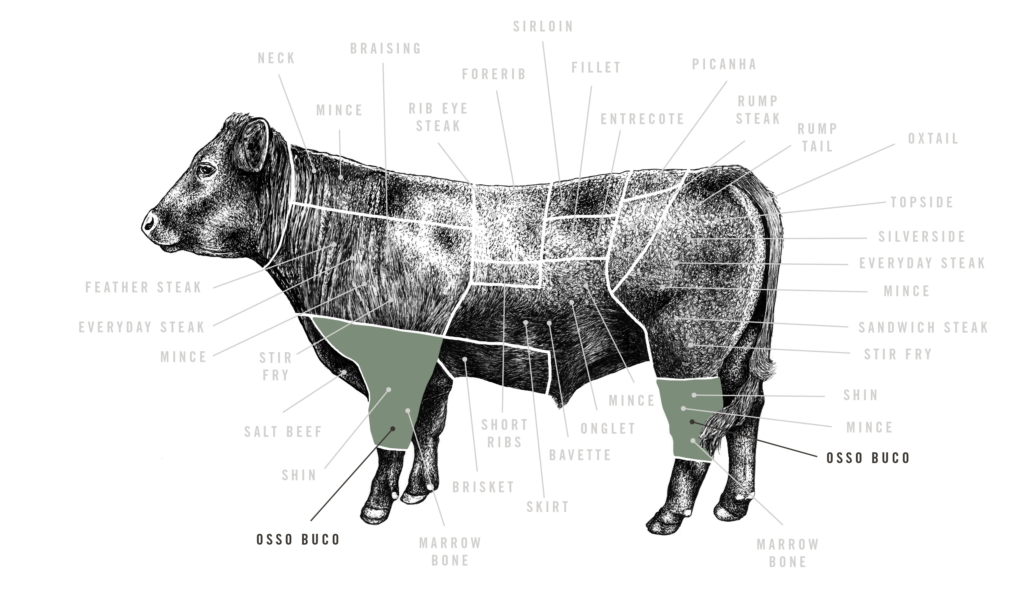 Grass Fed Beef Osso Buco meat cuts diagram