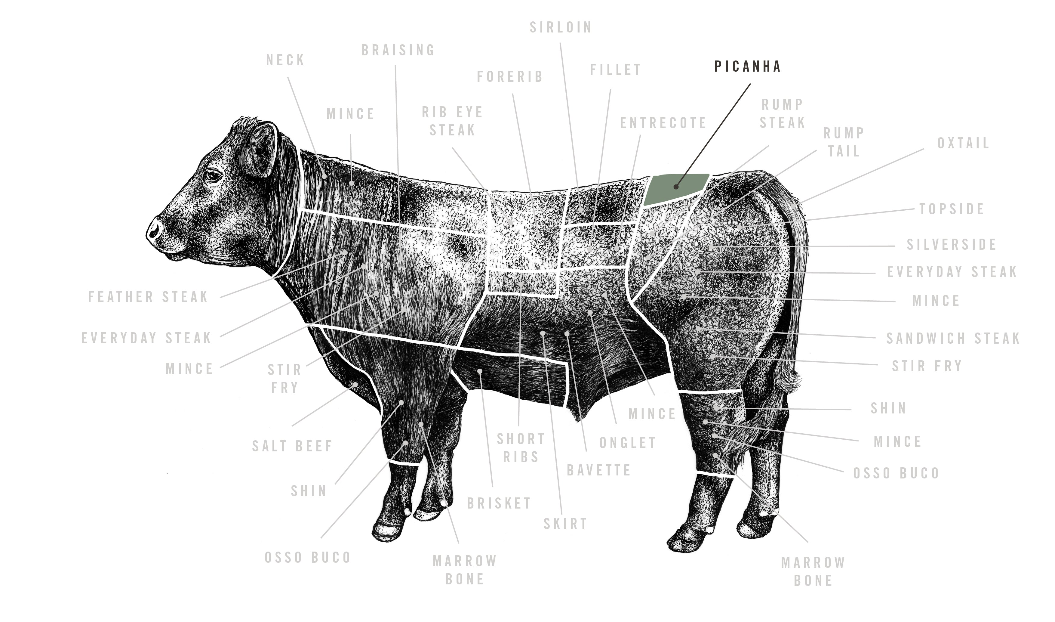 Red Ruby Picanha meat cuts diagram
