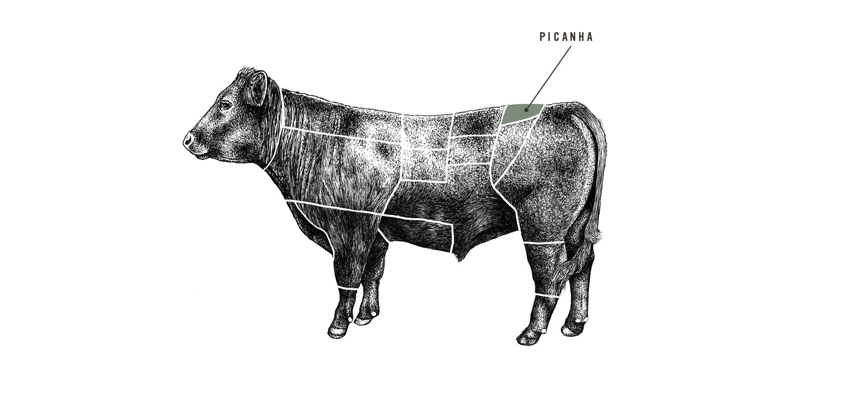 Grass Fed Beef Picanha meat cuts diagram