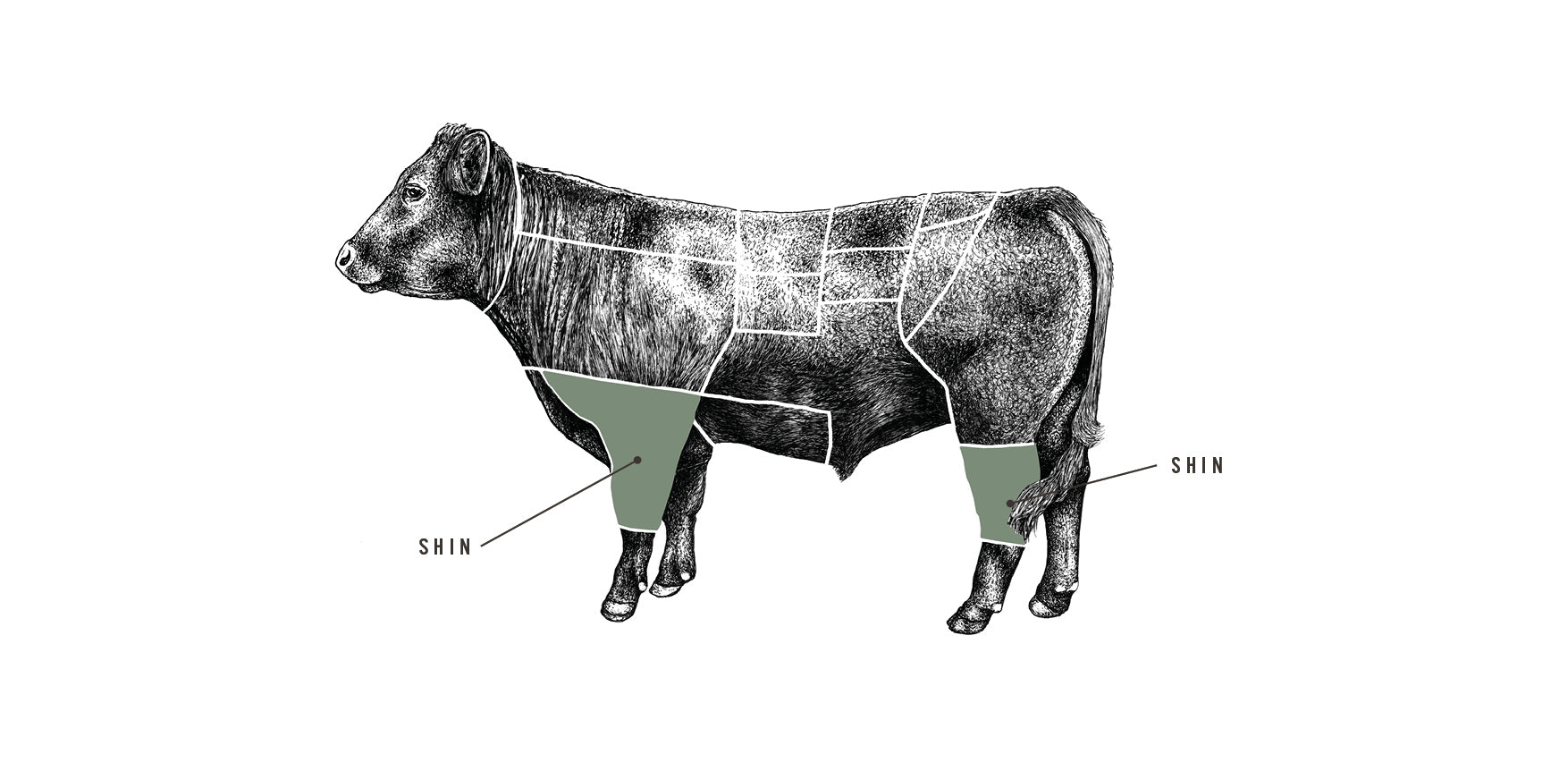 Grass Fed Diced Beef Shin meat cuts diagram