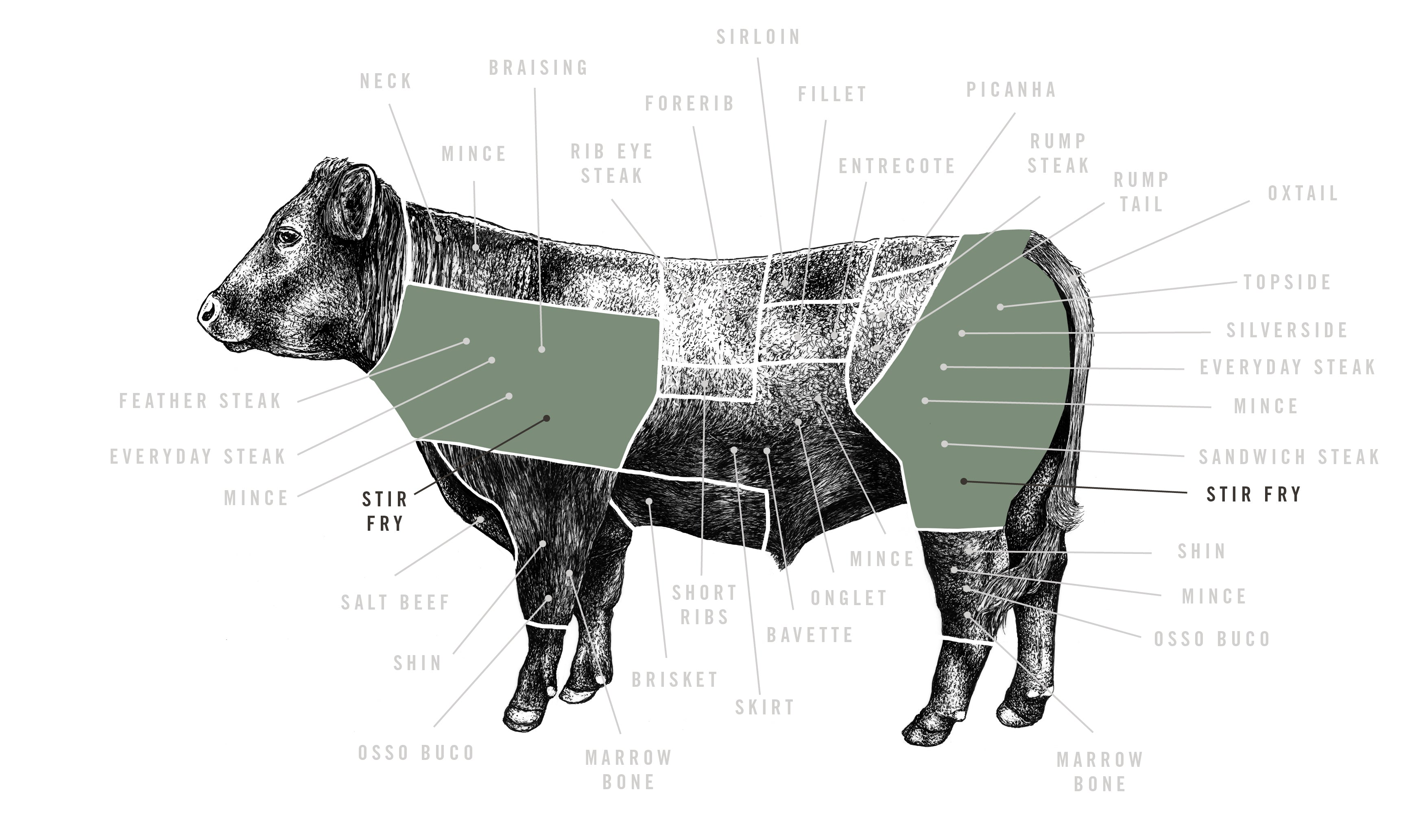 Grass Fed Aromatic Beef Stir Fry meat cuts diagram