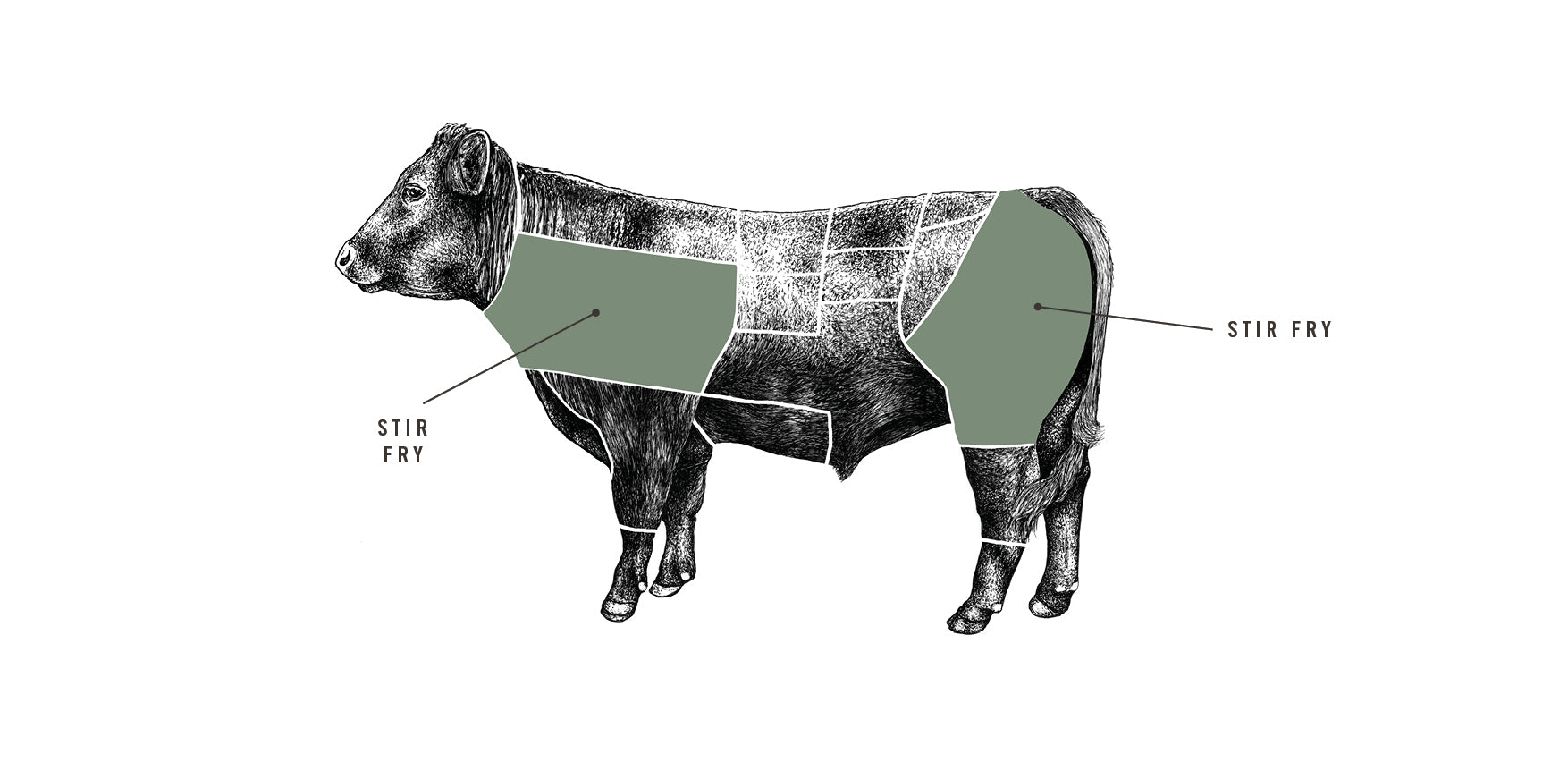 Grass Fed Beef Stir Fry meat cuts diagram