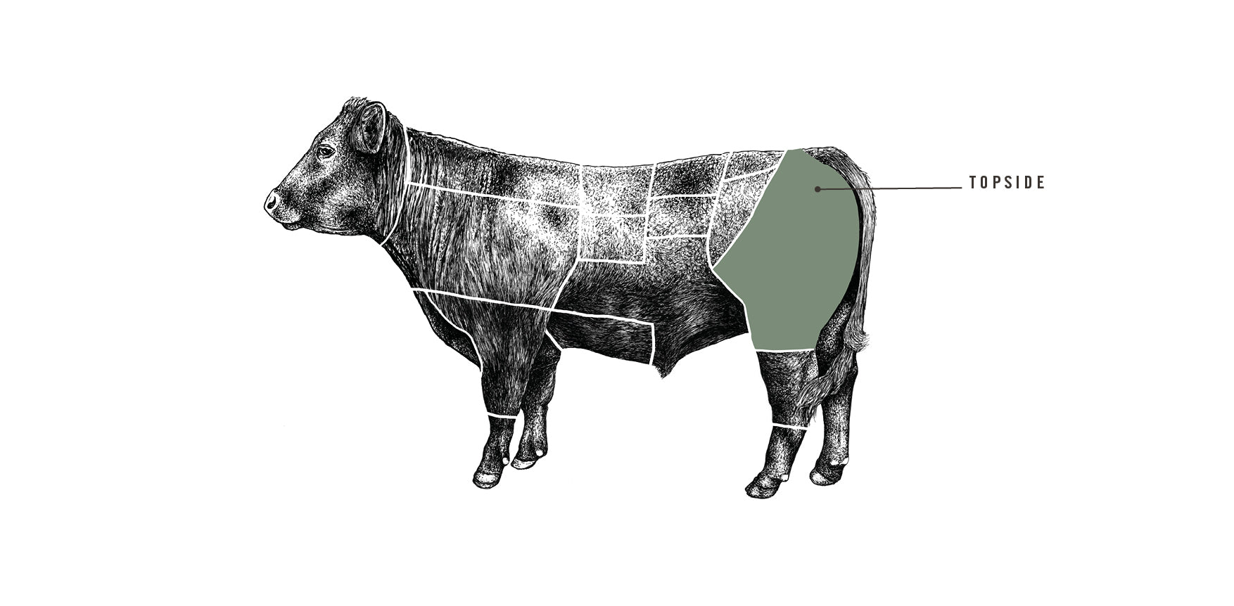 Grass Fed Beef Topside meat cuts diagram