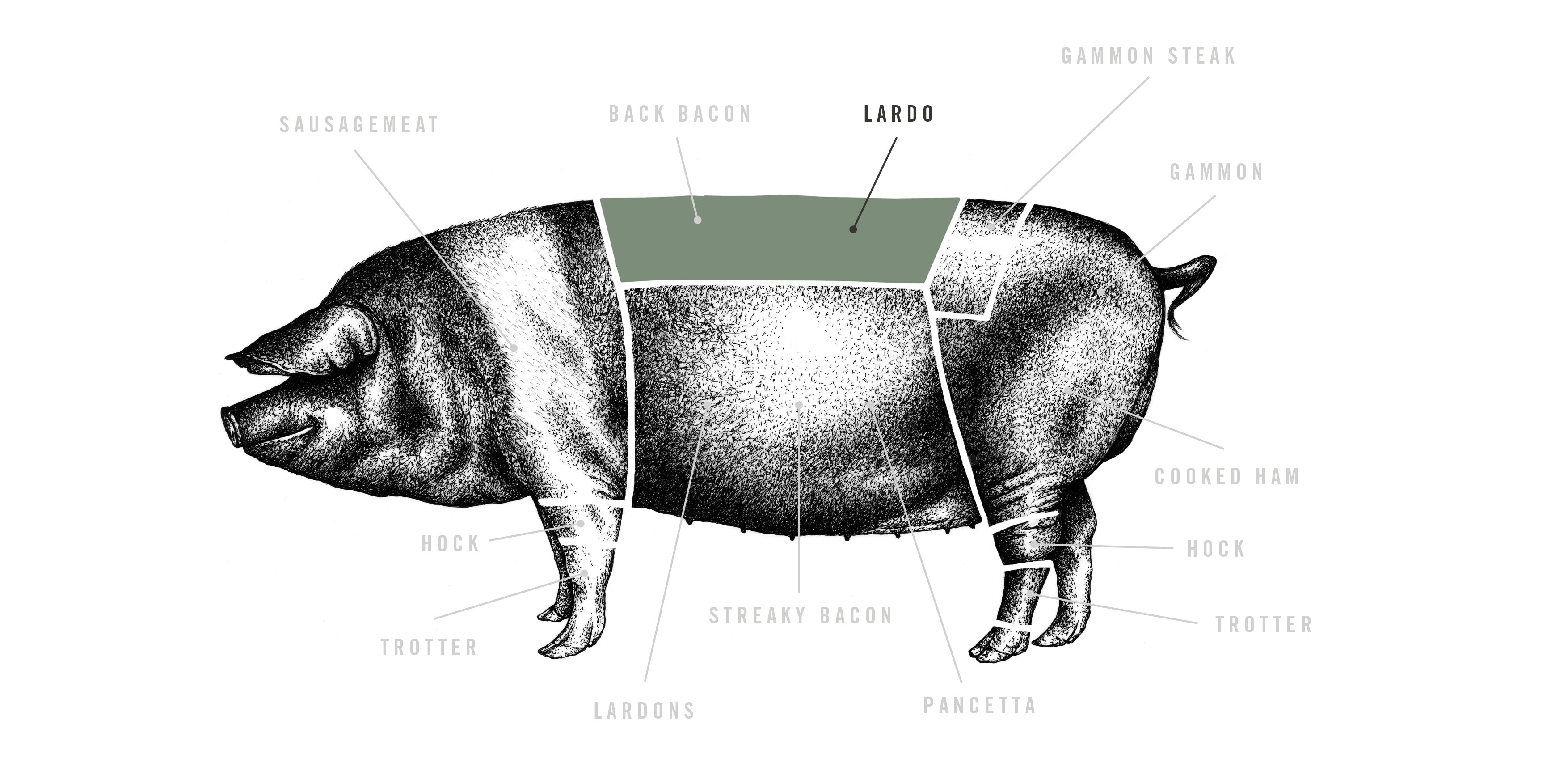 Saddleback Lardo meat cuts diagram