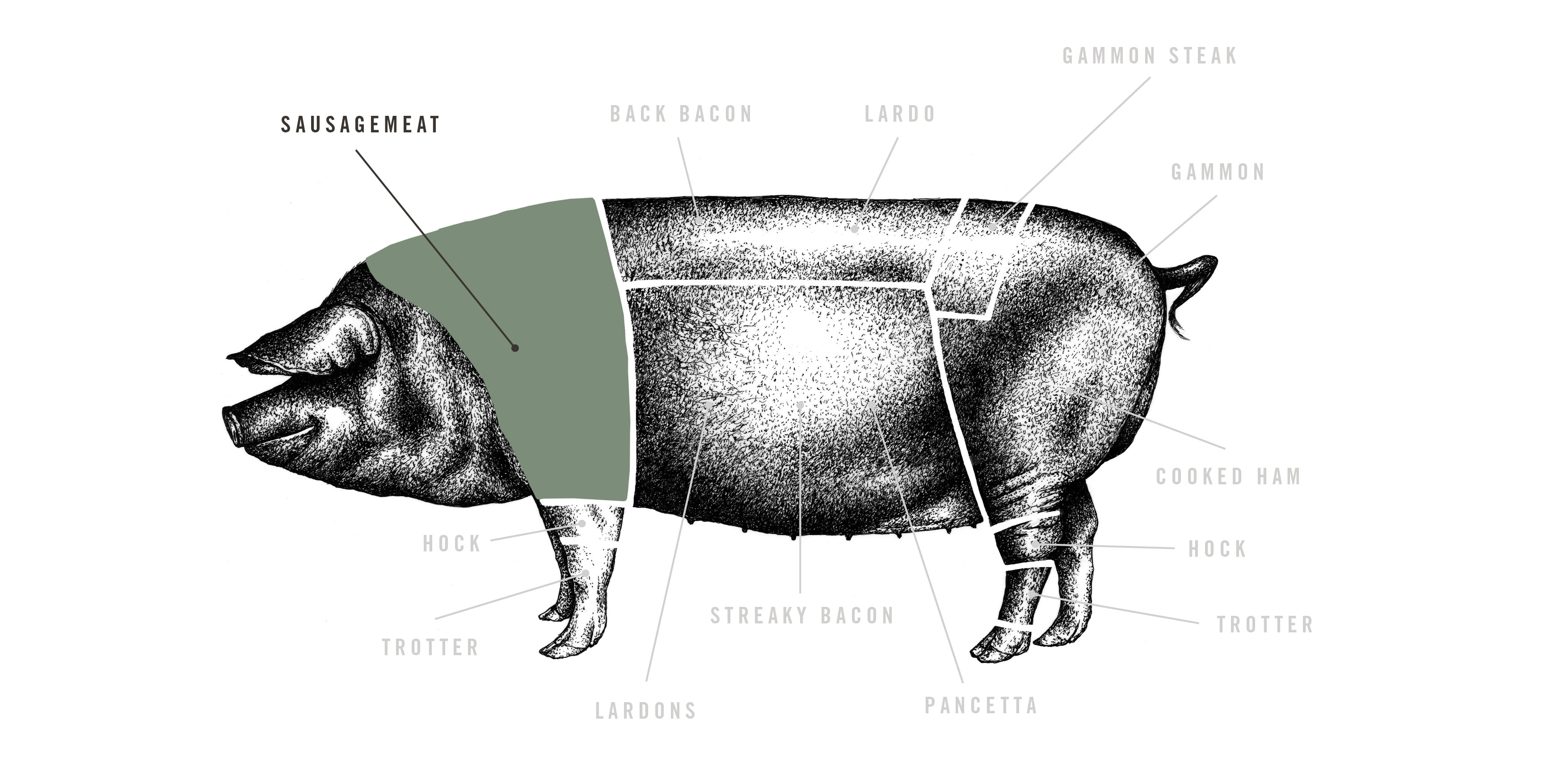 Natural Plain Pork Sausages meat cuts diagram