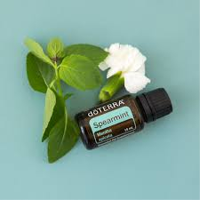 Spearmint Essential Oil - Melissa Mitchell Health & Wealth