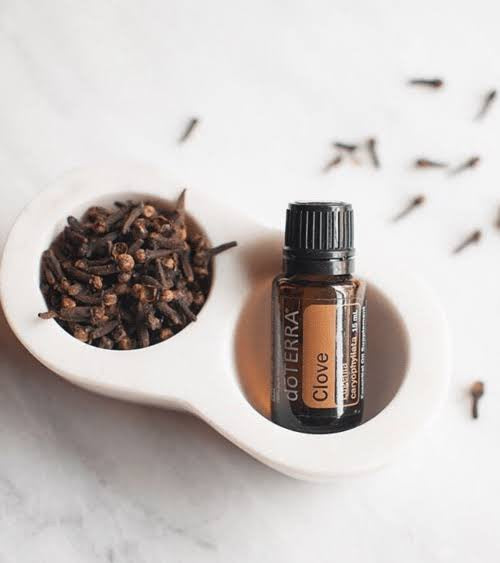 Clove Essential Oil 15ml doTERRA - Melissa Mitchell Health & Wealth