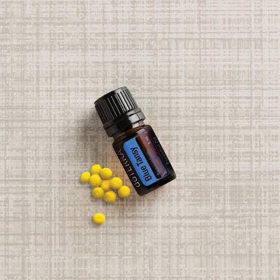 Blue Tansy Essential Oil 5ml doTERRA - Melissa Mitchell Health & Wealth