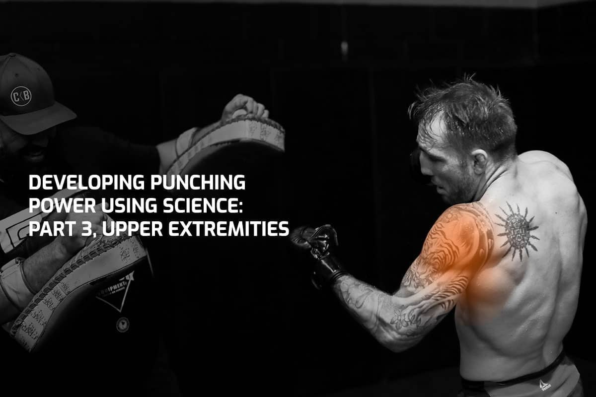 Developing Punching Power Using Science: Part 3, Upper Extremities