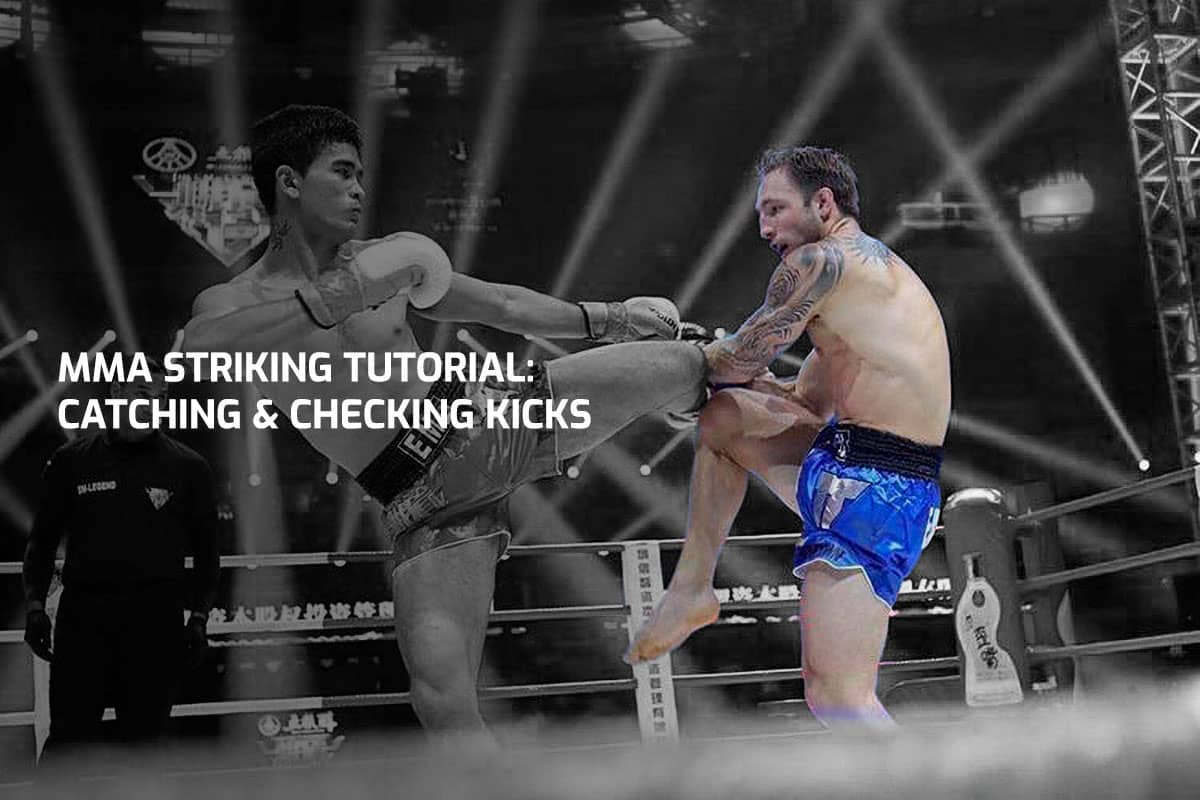 MMA Striking Tutorial: Catching & Checking Kicks