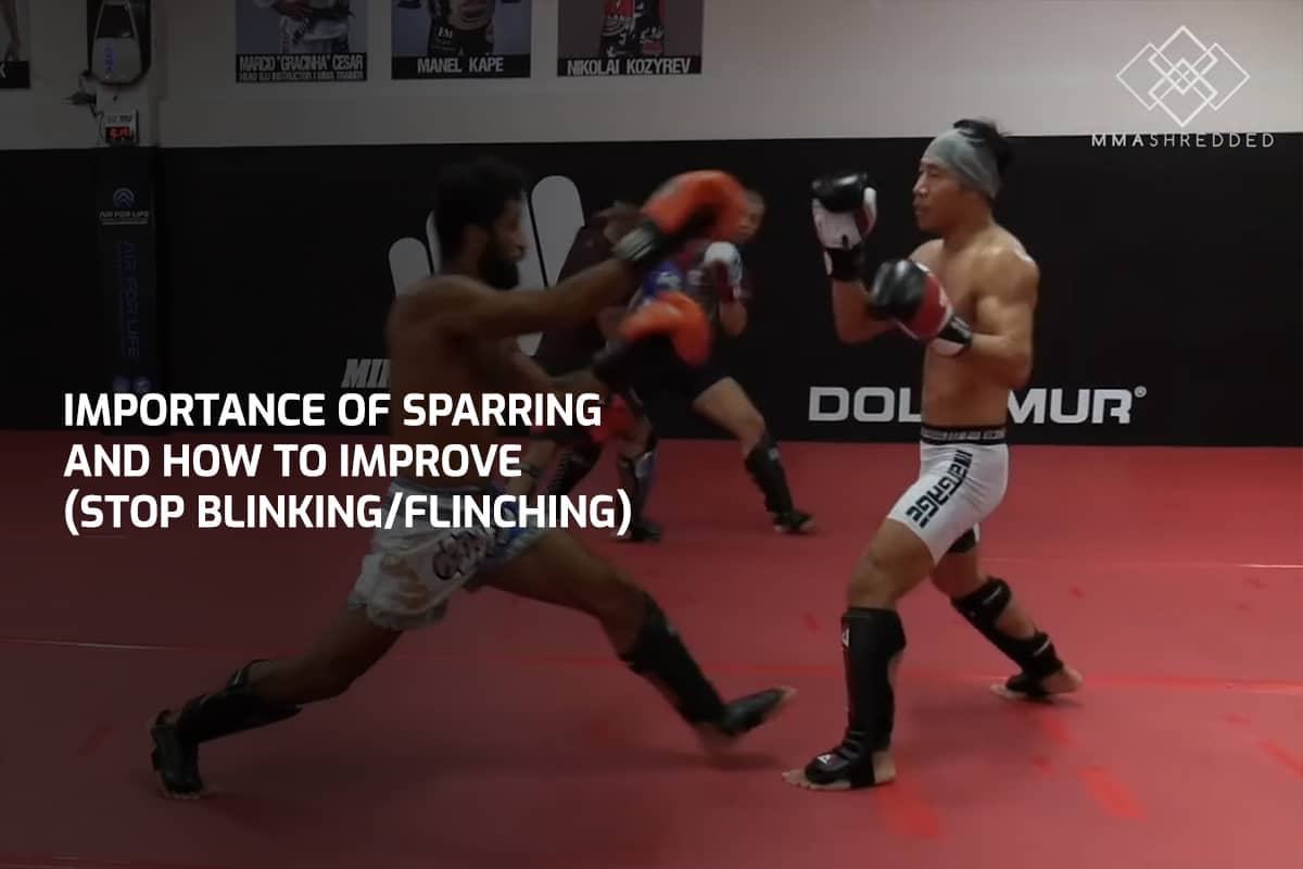 Importance of Sparring and How to Improve