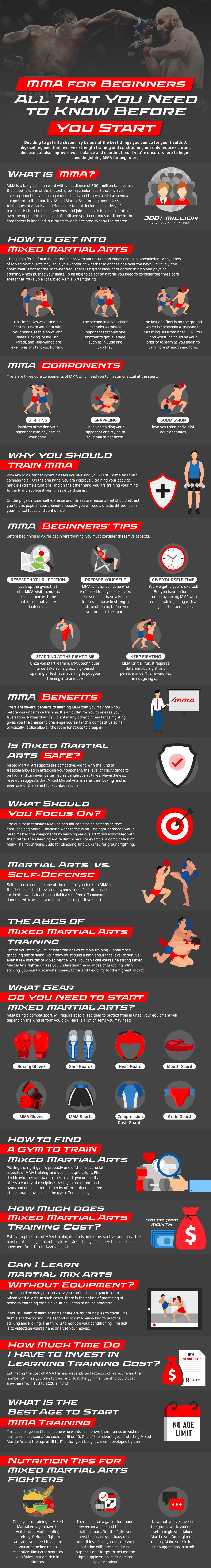 MMA for Beginners Infographic: All That You Need to Know Before You Start