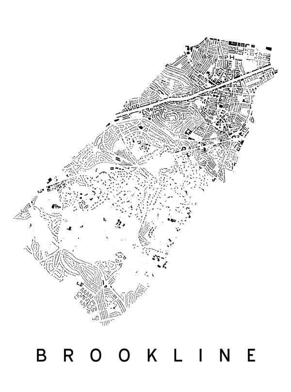Brookline City Plan Print