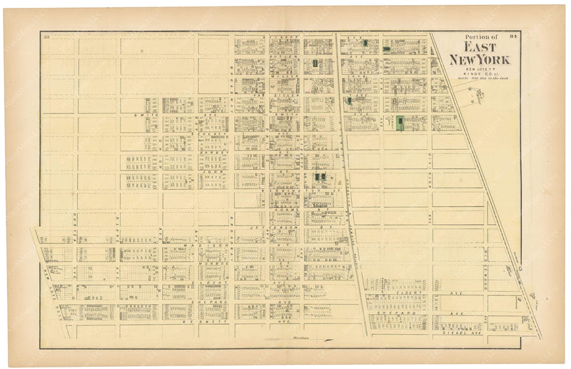 Brooklyn: East New York, New York 1873