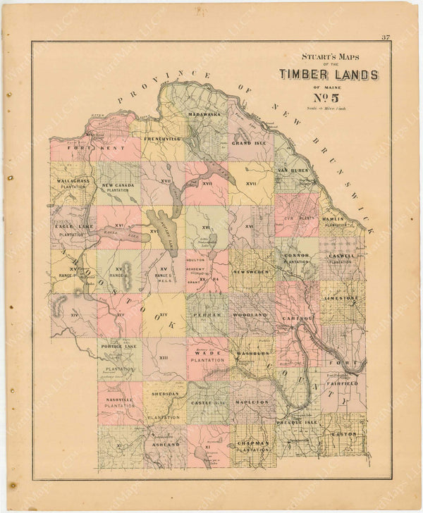 Timber Lands Number 5, Maine 1894-95