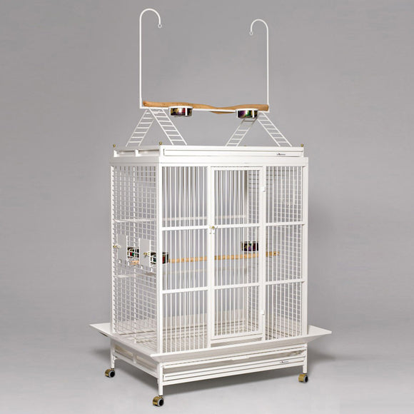 What is The Best Play Top Bird Cage For Your Parrot?