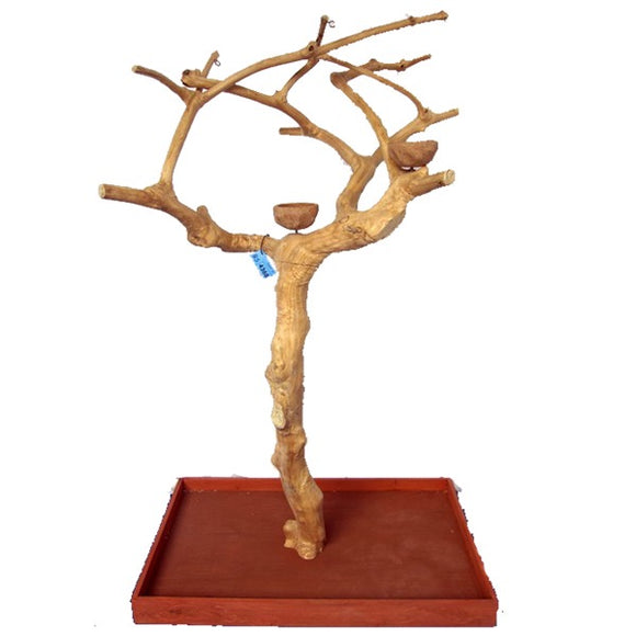 A&E Cage Co. Small Java Wood Tree Floor Play Stand