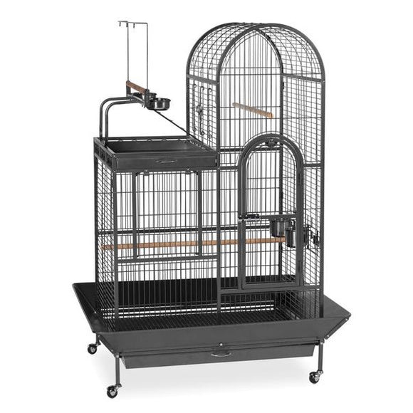 Prevue Hendryx Deluxe Parrot Bird Cage with Play Top