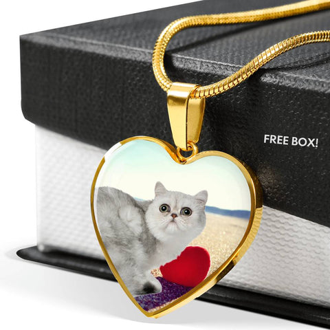 Exotic Shorthair Cat Print Heart Pendant Luxury Necklace