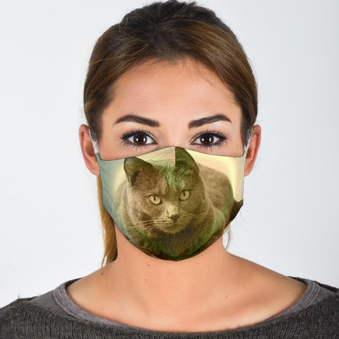 Chartreux Cat Print Face Mask
