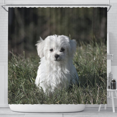 Cute Maltese Dog Print Shower Curtains