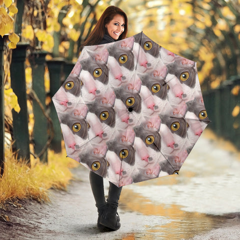 Cornish Rex Cat Print Umbrellas
