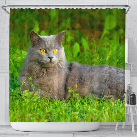 Chartreux Cat Nature Print Shower Curtain