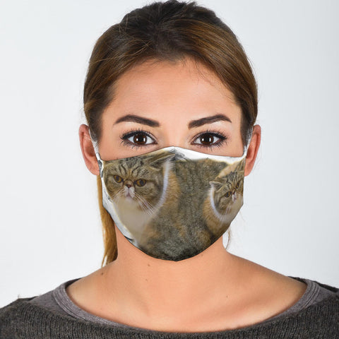 Exotic Shorthair Print Face Mask- Limited Edition