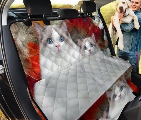 Ragdoll Cat Print Pet Seat Covers