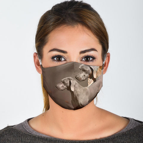 Chesapeake Bay Retriever Print Face Mask