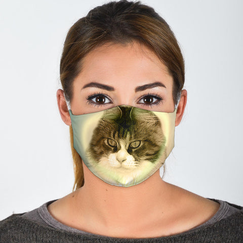 Cute Maine Coon Cat Print Face Mask