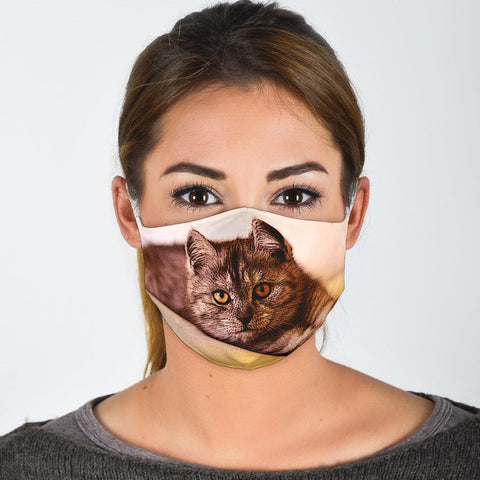 Amazing Exotic Shorthair Print Face Mask