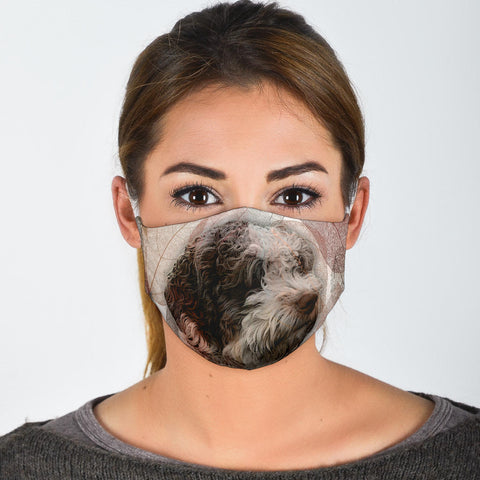 Lovely Spanish Water Dog Print Face Mask