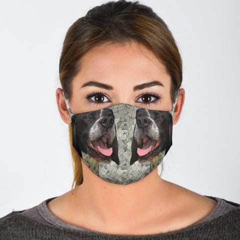 Pointer Dog Print Face Mask
