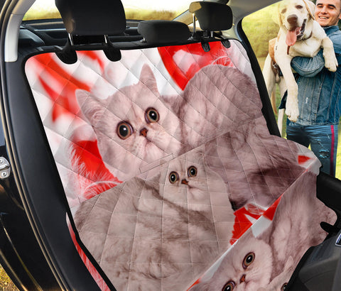 Exotic Shorthair Print Pet Seat Covers
