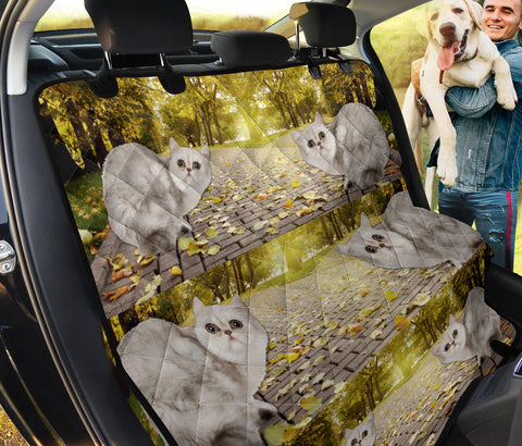 Lovely Exotic Shorthair Print Pet Seat Covers