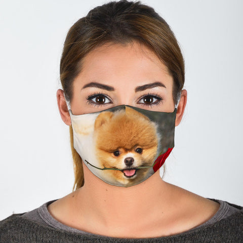 Pomeranian With Rose Print Face Mask