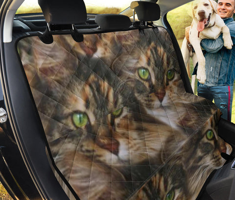 Maine Coon Cat Print Pet Seat Covers