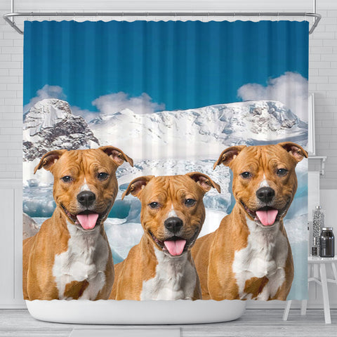 American Staffordshire Terrier On Sky Blue Print Shower Curtains
