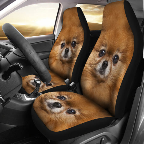 Pomeranian Dog Print Car Seat Covers