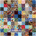 100 Animal I Spy Easy PreCut Quilt Pack Kit