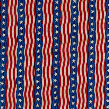 America The Beautiful Stripe Robert Kaufman