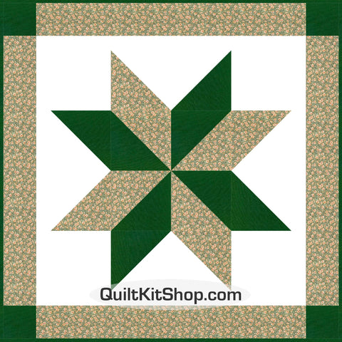 Freedom Flower Star Wall Quilt Kit